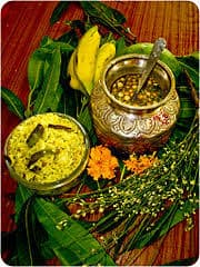 Telugu New Year is celebrated as Ugadi- उगादि के रूप में मनाया जाता है तेलगु नव वर्ष