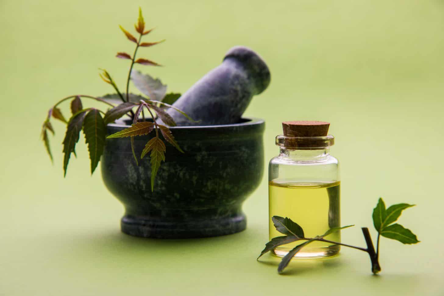 आयुर्वेदीय चिकित्सा एवं आयुर्वेदिक औषधियां - Ayurvedic Treatment & Ayurvedic Medicine