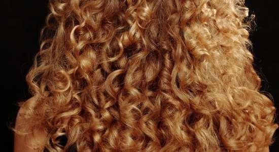 बालों की समस्याओं के आसान घरेलू उपाय