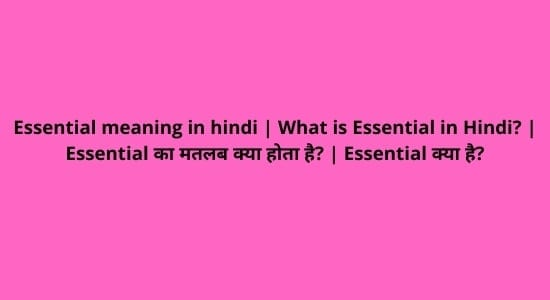 Essential meaning in hindi