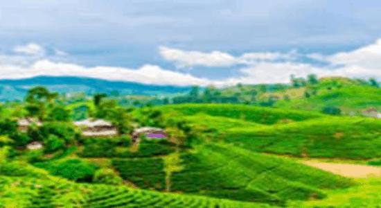 Honeymoon Destinations in India