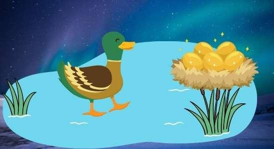 duck and golden egg Panchtantra ki kahani