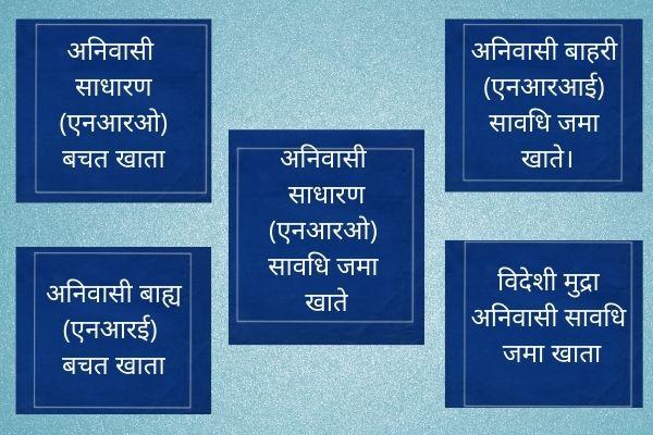 NRI full form in hindi
